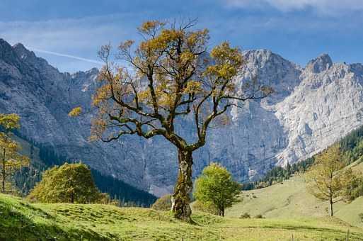 mountains-863462__340