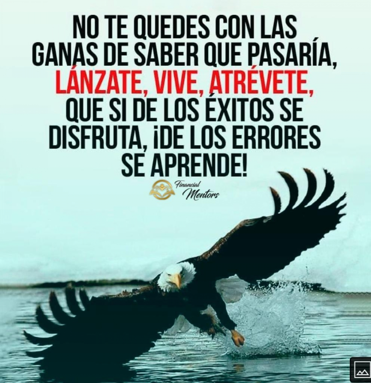 Atrevete comoAguila 2020-11-07