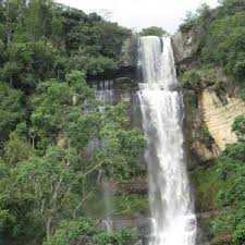cascadas y bosques 19-03-2019