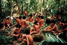 Tribus Indígenas 28-07-2019