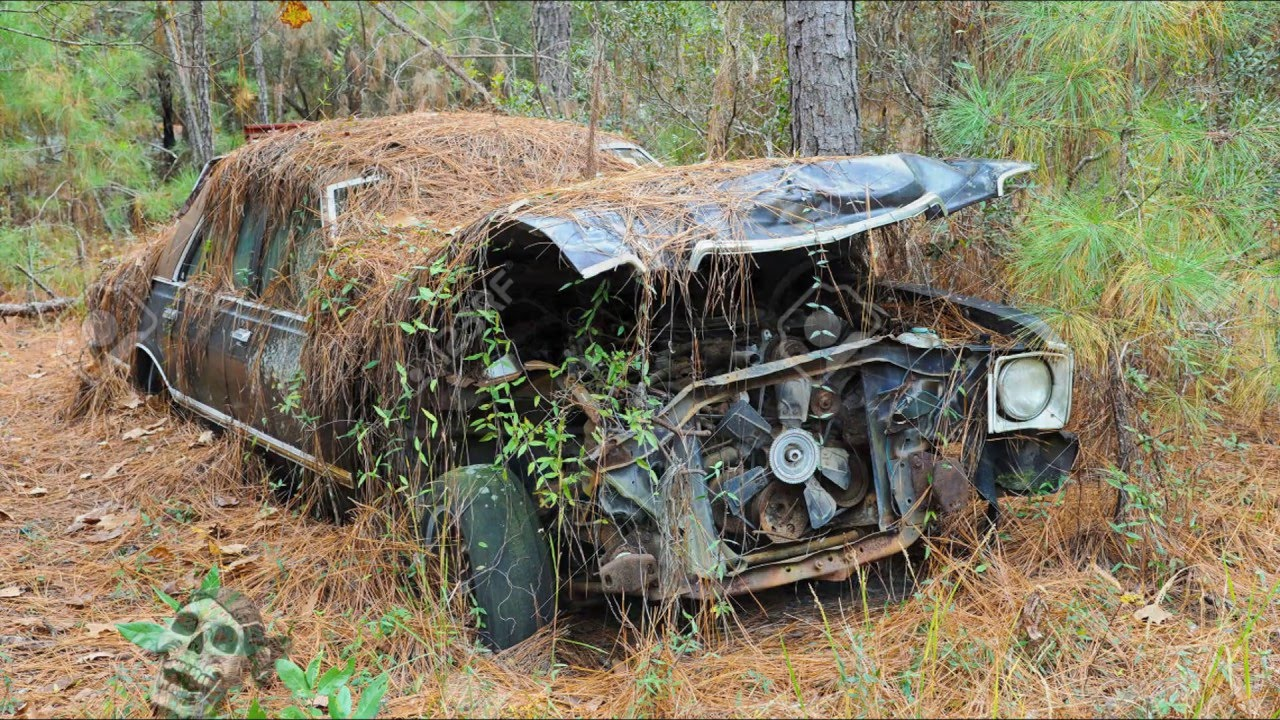Abandoned Cars in the Woods USA 2016. Abandoned Crashed Cars and Trucks in America