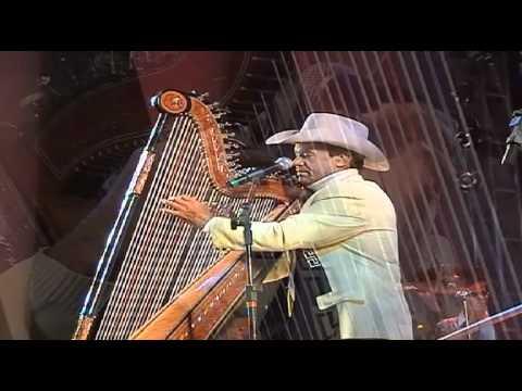 Avante e Amaury solo de harpa Pajaro Campana